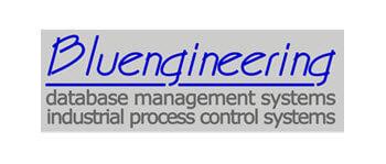 bluengineering s.r.l fcard logo