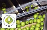 f&b industry agropodmash expo newspri ru event